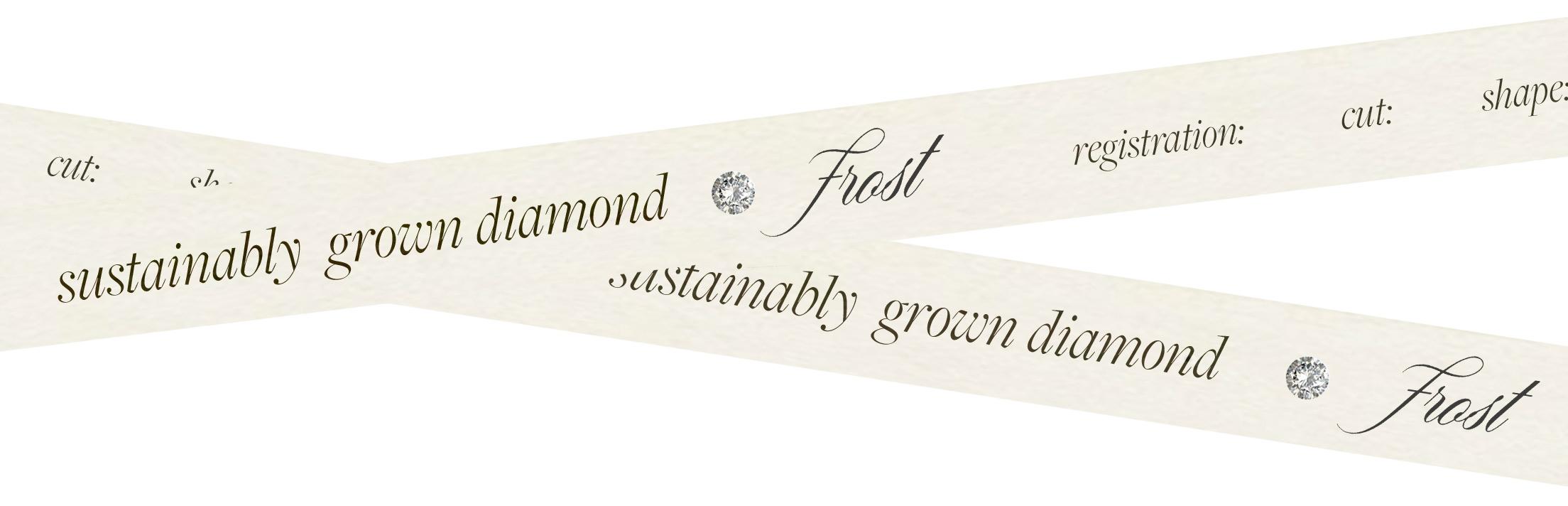 Sustainably Grown Diamond - Frost